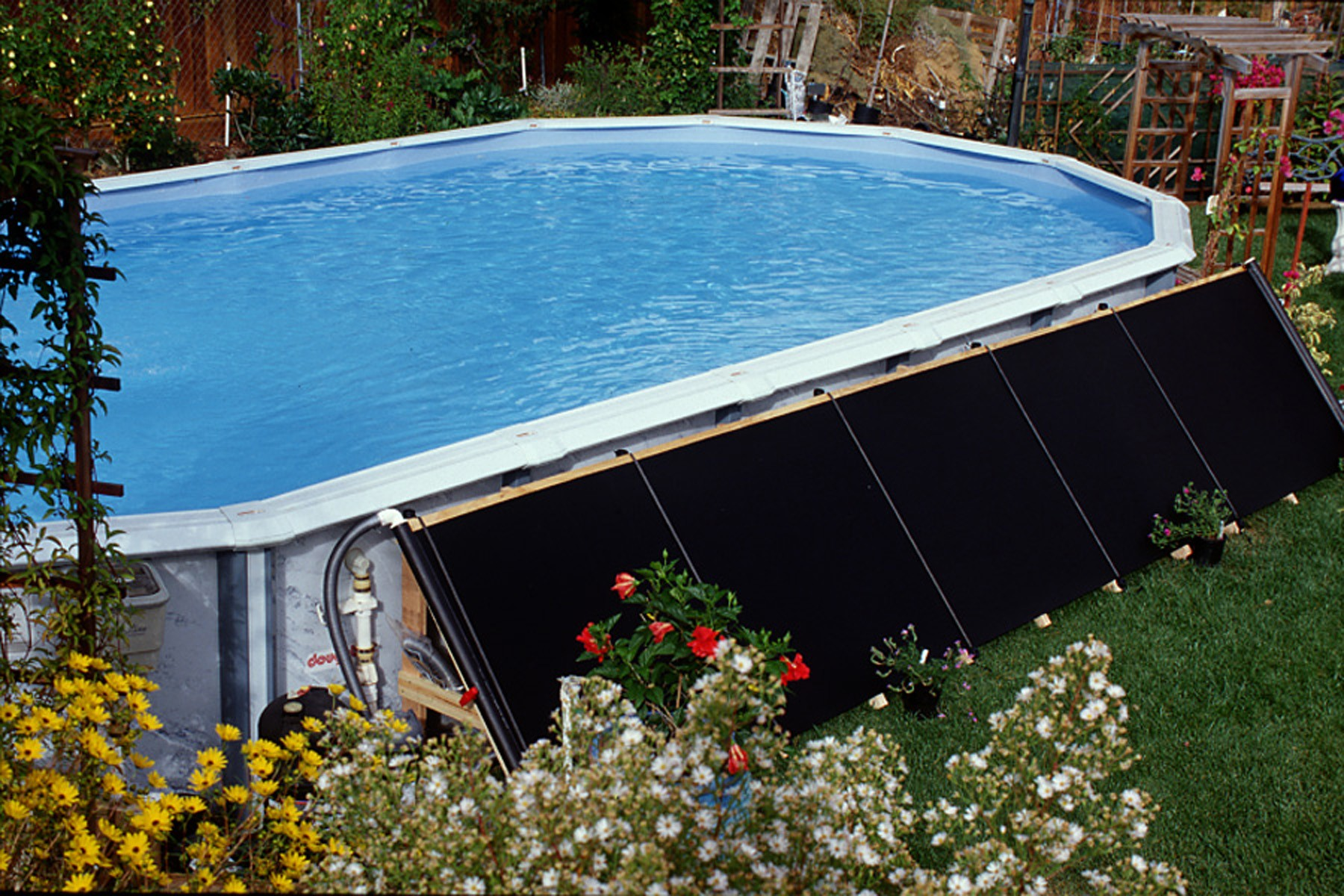 Fafco Bear Solar Pool Heaters Feature Premium Quality Superior Technology Highest Rated